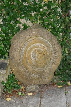 The fossil in King Arthurs Court